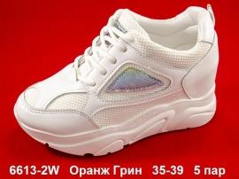 Оранж Грин  6613-2W 35-39