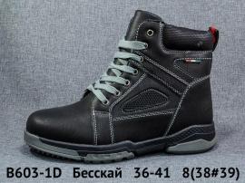 Бесскай Ботинки зимние B603-1D 36-41