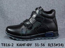 КАНГ-ФУ Ботинки зимние T816-2 31-36