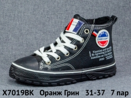 Оранж Грин Ботинки демисезонные X7019BK 31-37