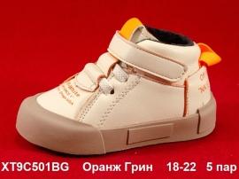 Оранж Грин Ботинки демисезонные XT9C501BG 18-22