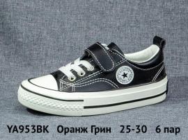 Оранж Грин Кеды YA953BK 25-30