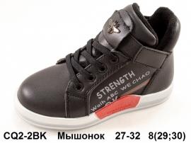 Мышонок Ботинки демисезонные CQ2-2BK 27-32