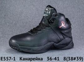 Канарейка Ботинки демисезонные E557-1 36-41