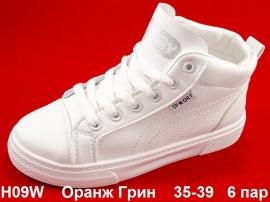 Оранж Грин Ботинки демисезонные H09W 35-39