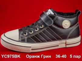 Оранж Грин Ботинки демисезонные YC975BK  36-40